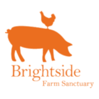 Brightside Farm Sanctuary